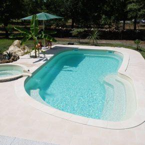 essonne-piscine-spa-nos-realisations-photo-piscine-exterieure-ligne-courbee-007